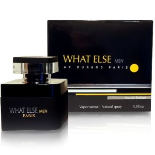 Ap Durand What Else Men EDP 100ml Perfume For Men